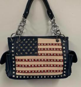 American Flag Concealed